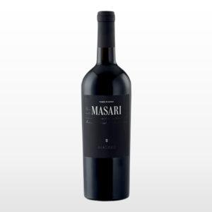 masari_MASARI